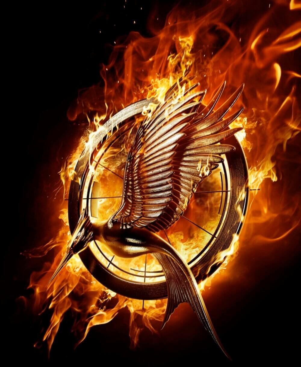 hunger-games-catching-fire-movie-poster