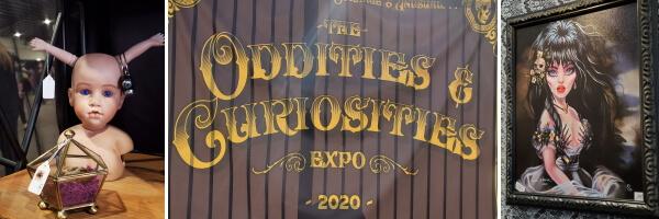 oddities gall 1 1